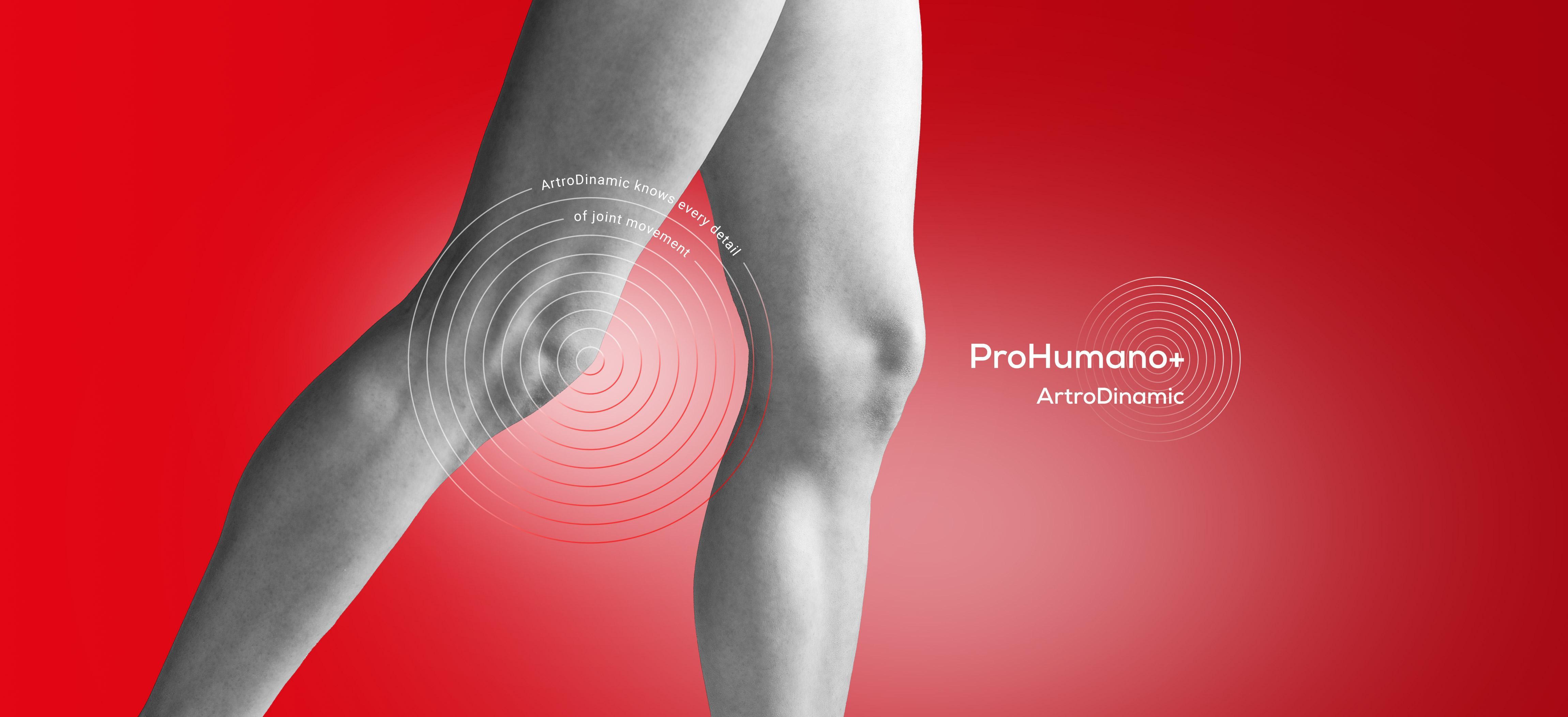 ArtroDinamic supports cartilage regeneration