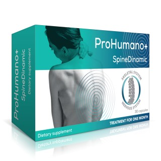 SpineDinamic for the peripheral nervous system. Provides support to the peripheral nerve regeneration and restores spine mobility.
