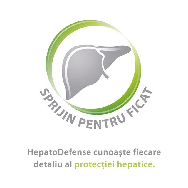 HepatoDefense Sirop ajută la protejarea celulelor hepatice